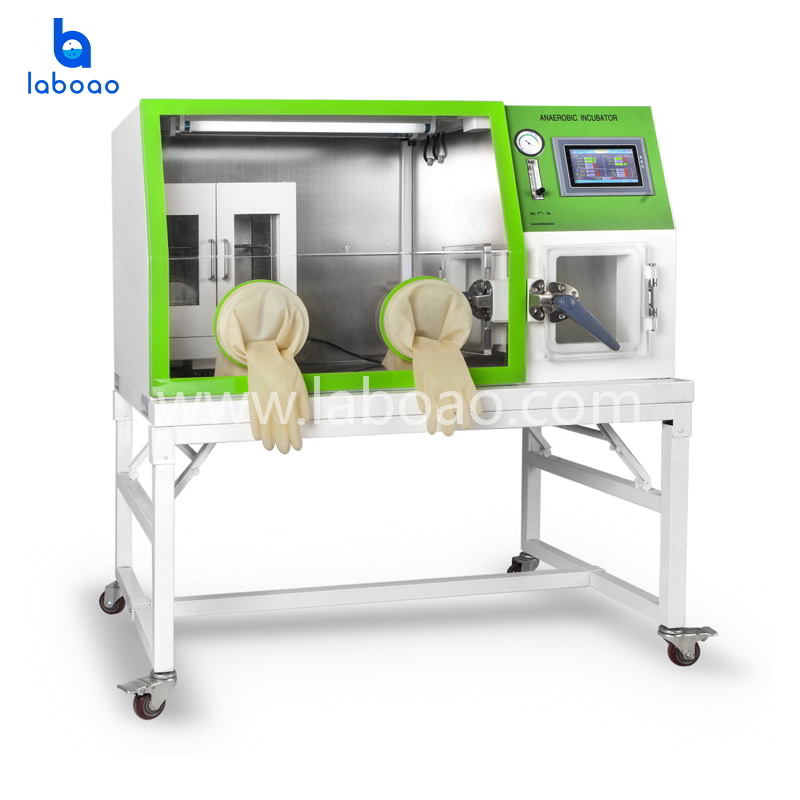 Anearobic Incubator with Touch Screen