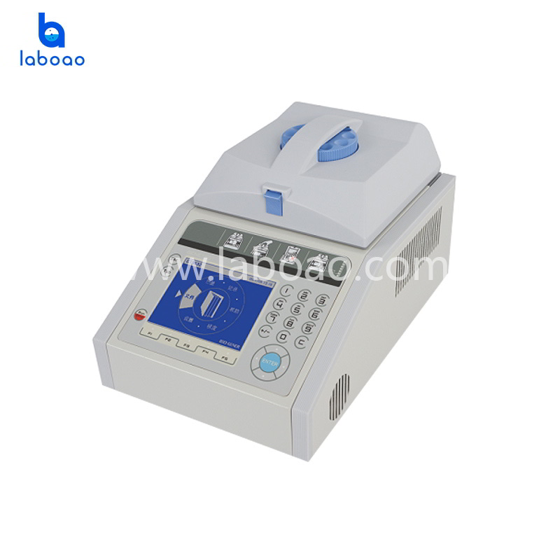Basic economic thermal cycler with large LCD screen